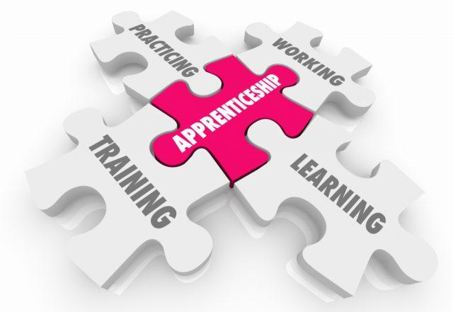 Jigsaw pieces explaining the key aspects of an apprenticeship