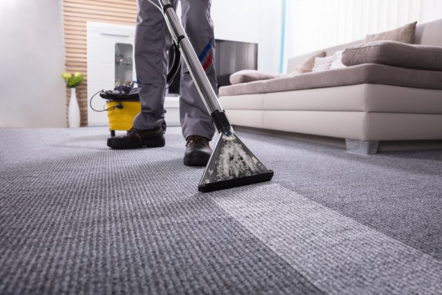 Person deep cleaning a carpet